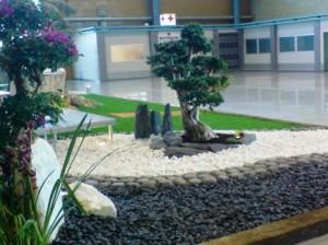 Dise o jardines archives focus piedra noticias sobre for Jardines que necesitan poca agua