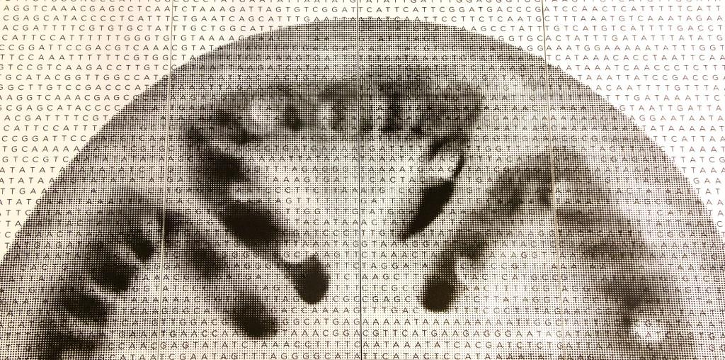 Genoma-tomate-sobre-Dekton