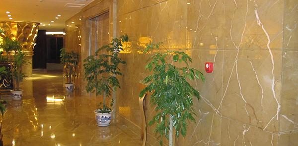 Spanish Gold-Marmoles Romanense
