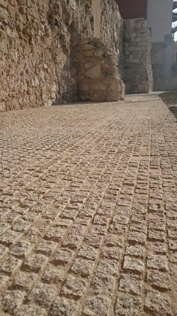 granito gris albero-muralla