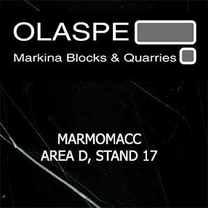 Banner Olaspe 2016