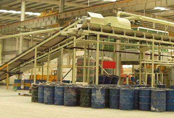 Shiva_Export_plants