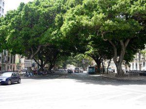 Alameda_Principal.malaga