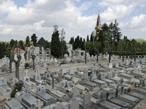 cementerio almudena madrid