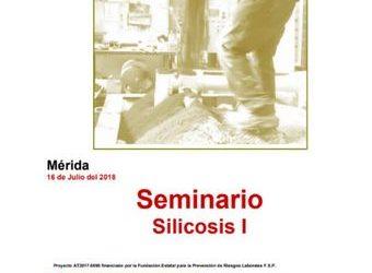 silicosis merida