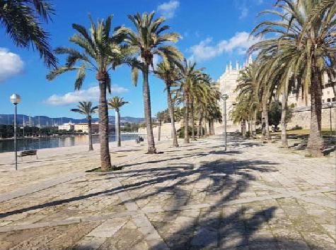 Paseo de Mar-Palma