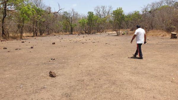 cantera guinea