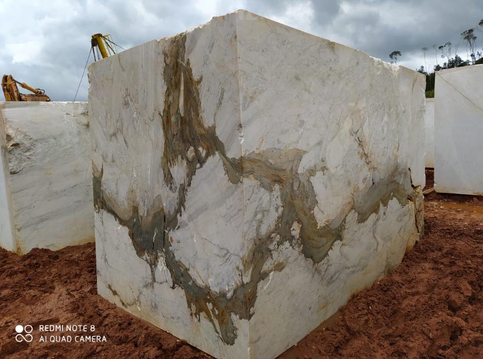 Calacatta Columbus marble-2