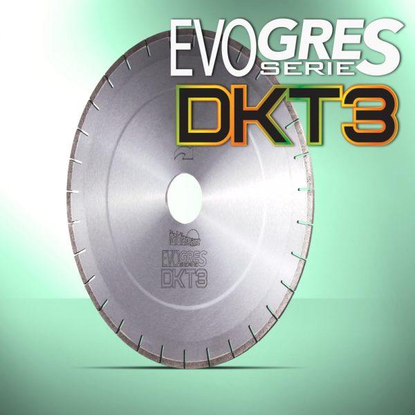 Disco-EvoGres-DKT3_Italdiamant_var